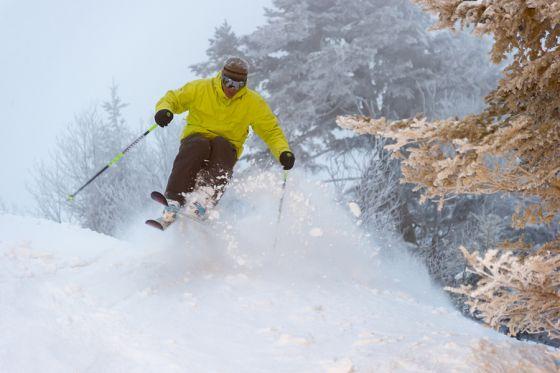 1320_ski.jpg (33 Kb)
