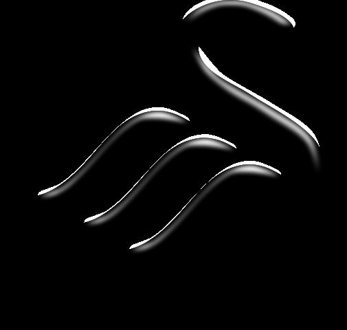 2538_505px-swansea_city_logo_svg.png (47.75 Kb)