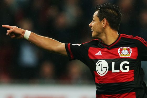 4465_chicharito.jpg (26.01 Kb)