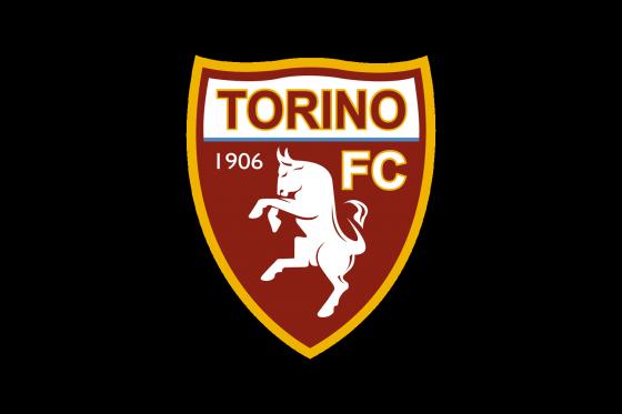 5944_torino.png (58.97 Kb)